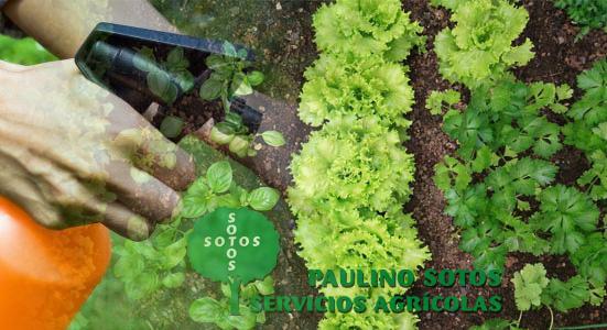 fertilizantes y abonos naturales para la agricultura ecologica en agricolas soto
